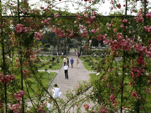 Riapre il roseto comunale. Montanari: un museo a cielo aperto con oltre mille tipi di rose
