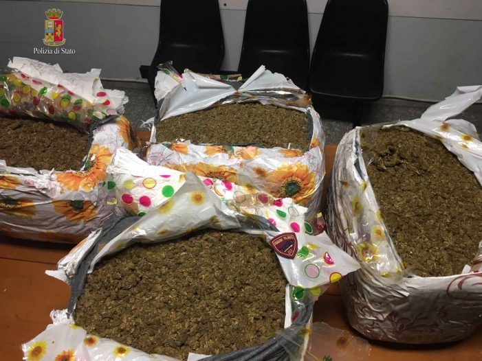 Tentano di spedire a Londra 75 kg di marijuana, arrestati due giovani albanesi